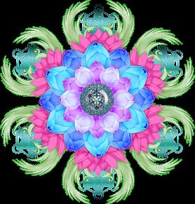 lotus-flower-3650472_640
